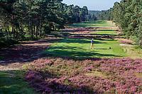 LEUSDEN  -  Tee hole 12, par 5, Golfclub de Hoge Kleij  COPYRIGHT KOEN SUYK