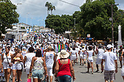 Procession walking to Bonfim, Every second 2nd Thursday in February thousands of people attend the Lavagem do Bonfim - The washing of Bonfim at the Iglesia do Bonfim - Church of Bonfim in Salvador de Bahia,