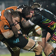 20200104 Rugby, Guinness PRO14 : Zebre vs Toyota Cheetahs