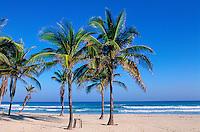 Cuba, Plage de l'Est de la Havane, Guanabo // Cuba, Easthern beach of Havana, Guanabo