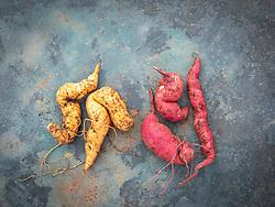 Ipomoea batatas 'Kaukura' and 'Murasaki' - Sweet potato