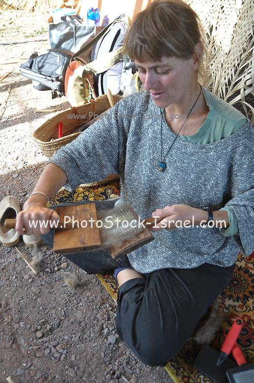 Woman Carding Sheep's Fleece