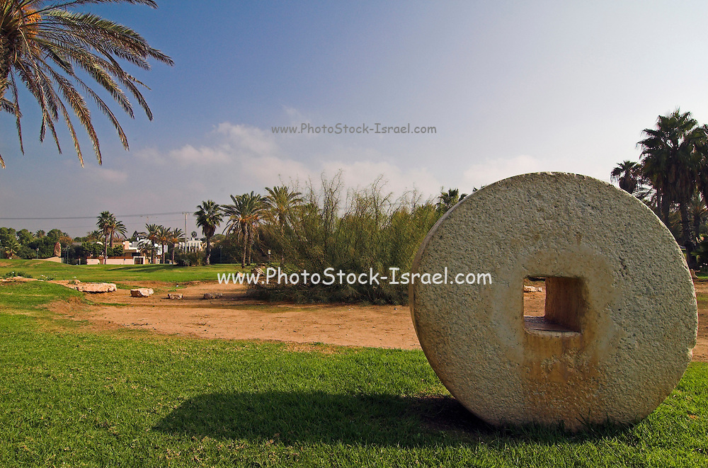 Herzelia city park, with ancient grindstones on display. Hertzelia, A small town north of Tel Aviv, has a big hi tec industrial park, a resort area with hotels yacht club and a marina and crusade ruins of Apolonia December 2005