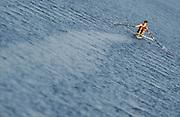 Eton, United Kingdom.   Men's single scull, Graeme THOMAS, move away from the start at the 2012 GB Rowing Senior Trials, Dorney Lake. Nr Windsor, Berks.  Saturday  10/03/2012  [Mandatory Credit; Peter Spurrier/Intersport-images]