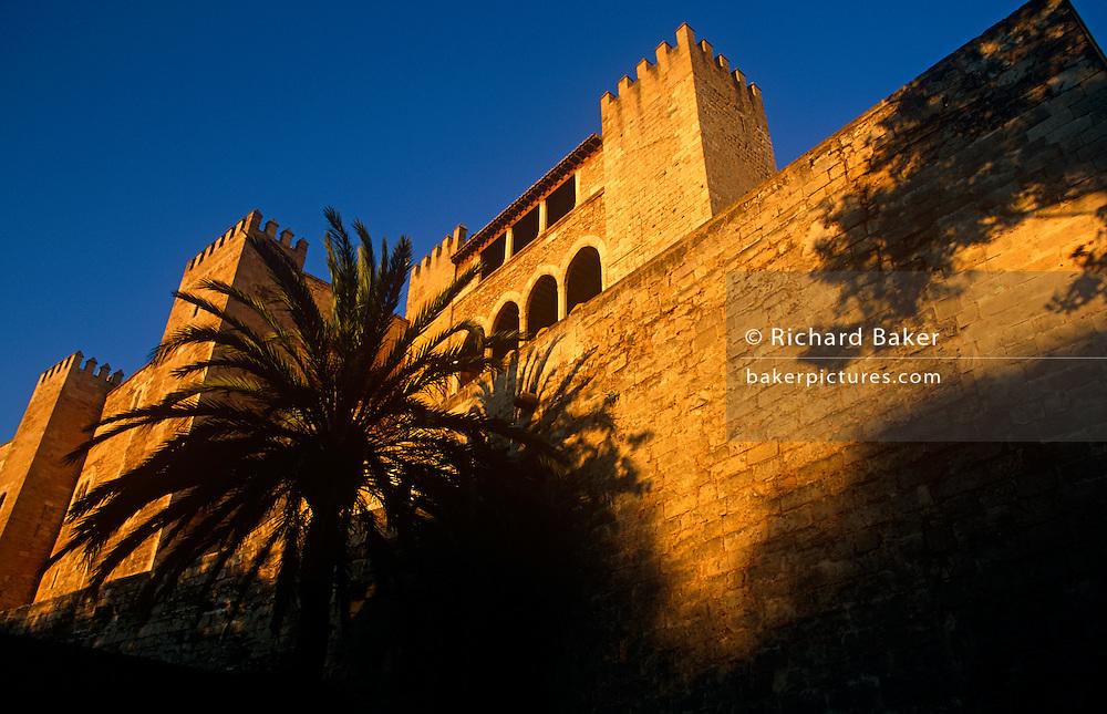 Set below palm trees, a low angle view of Palma's Museum del Palau de la Almudaina (Almudaina Palace)
