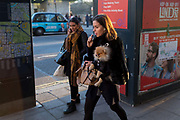 A young woman vapes while carrying her pet Pomeranian toy dog on Piccadilly, on 20th January 2020, in London, England.