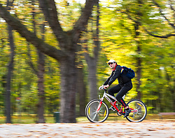 THEMENBILD - Herbst im Wiener Prater. Das Bild wurde am 27. Oktober 2013 aufgenommen. im Bild Radfahrer // THEMES PICTURE - Autumn at Prater in Vienna. The image was taken on october, 27th, 2013. Picture shows Cyclist , AUT, EXPA Pictures © 2013, PhotoCredit: EXPA/ Michael Gruber