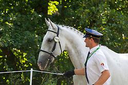 Radek Nesvacil, (CZE), Generale Iscana II, Iscara 13, Sacramoso Siria I, Siglavi P Montilla XI, Solo Xantora XVII - Horse Inspection Driving - Alltech FEI World Equestrian Games™ 2014 - Normandy, France.<br /> © Hippo Foto Team - Leanjo de Koster<br /> 25/06/14