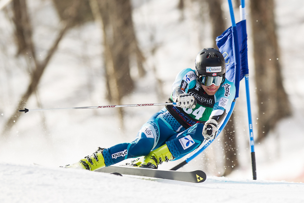 Martin Budal, skis during the first run of the men's giant slalom at the Dartmouth Carnival at Dartmouth Skiway on February 7, 2014 in Lyme, NH. (Dustin Satloff/EISA)