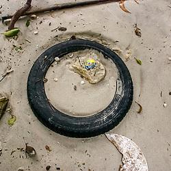 """Lixo na praia (Poluição) fotografado em Vitória / Vilha Velha, Espírito Santo -  Sudeste do Brasil. Registro feito em 2008.<br /> <br /> <br /> <br /> ENGLISH: Trash on the beach photographed in Vitória / Vilha Velha, Espírito Santo - Southeast of Brazil. Picture made in 2008."""
