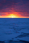 """Sunset on Arctic Sea Ice, Fram Strait, between Greenland and Svalbard, September 2009. In August 2012, Arctic sea ice hit a record minimum - this will affect weather and the global climate, as the ice cap reflects much of the sun's solar energy back into to space. With sea ice melting away, the dark water below absorbs more solar energy, which in turn causes more melting. This mage can be licensed via Millennium Images. Contact me for more details, or email mail@milim.com For prints, contact me, or click """"add to cart"""" to some standard print options."""