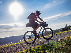 Mountain biker riding uphill near Todtnauberg, Baden-Wuerttemberg, Germany