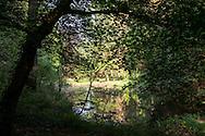 Europa, Deutschland, Nordrhein-Westfalen, Koeln, der Kalmusweiher in der Wahner Heide. - <br /> <br /> Europe, Germany, Cologne, North Rhine-Westphalia, the Kalmus pond in the Wahner Heath.