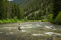 A fly fisherman hooks up with a rainbow trout on the Gallatin River near Big Sky in Montana.