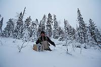 NATURE AND WILDLIFE PHOTOGRAPHER; SVEN ZACEK; OULANKA NATIONAL PARK; KUUSAMO; KITKAJOKI; FINLAND 2009; EUROPE; WINTER