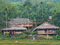 Asia, Vietnam, Pu Luong Nature Reserve