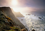 Foggy sunrise on Bodega Head, a granite bluff on the San Andreas Fault near Bodega Bay in Sonoma Coast State Park, Sonoma County, Northern California