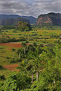 Limestone hill scenery and rural agricultural landscape surrounding Vinales,