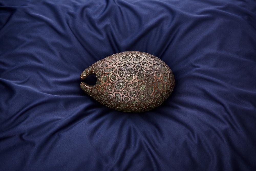 Adrian Spurr - Terra Seed