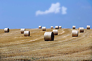Nederland,Groesbeek, 24-7-2006Rollen gemaaid gras liggen op een verdroogd grasland in Groesbeek.Foto: Flip Franssen
