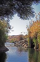 cataract on the river nile in egypt near aswan