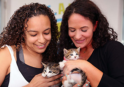 From left, Lorna Mejia, chief of shelter services for Miami Dade Animal Services, and Tara Smith, the yoga instructor, during the first yoga with cats workshop on Saturday, April 22, 2017 at Miami Dade Animal Services in Doral, Fla. (Roberto Koltun/Miami Herald/TNS)