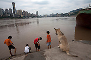 Some boys play on the banks of the Yangtze river in Qongqing China.