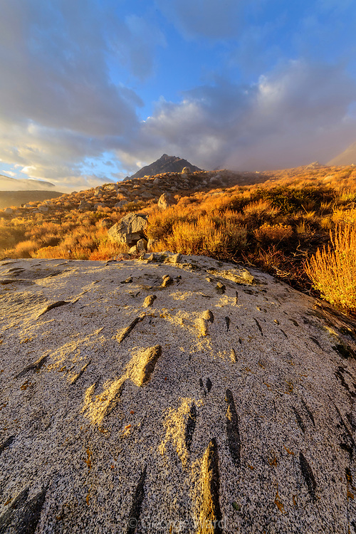 Granite with Diorite Inclusions, Mountain and Clouds, Inyo National Forest, Mono County, Caifornia