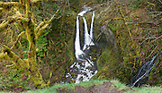 Walk two routes 4 or 5 miles to Triple Falls (~130-foot plunge) in Oneonta Gorge, in Columbia River Gorge National Scenic Area, Oregon, USA. Panorama stitched from 6 overlapping images.