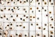 Herstellung von Augenprothesen - Reportage beim Okularist in Kassel, Deutschland, 17. Januar 2020