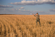 Experienced hunter Timmy Stein out on the North Dakota prarie grasslands east of Minot, shooting upland game birds such as grouse (also known in this area as 'chickens'). Timmy has been shooting for most of his life and puts considerable efforts into his hunting, efforts which reward him with wild game meats, none of which is wasted. Here he uses an over and under (up and under) double barrel shot gun.