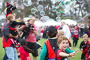 Essendon Football Club Family Day