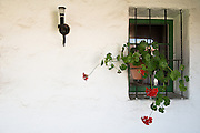White Spanish Stucco Wall with Window and Flowers