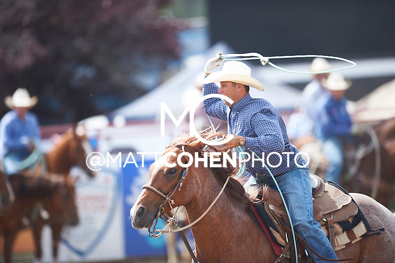 Team roper Mike Christensen of Bakersfield, CA competes at the Redding Rodeo in Redding, CA<br /> <br /> <br /> UNEDITED LOW-RES PREVIEW<br /> <br /> <br /> File shown may be an unedited low resolution version used as a proof only. All prints are 100% guaranteed for quality. Sizes 8x10+ come with a version for personal social media. I am currently not selling downloads for commercial/brand use.