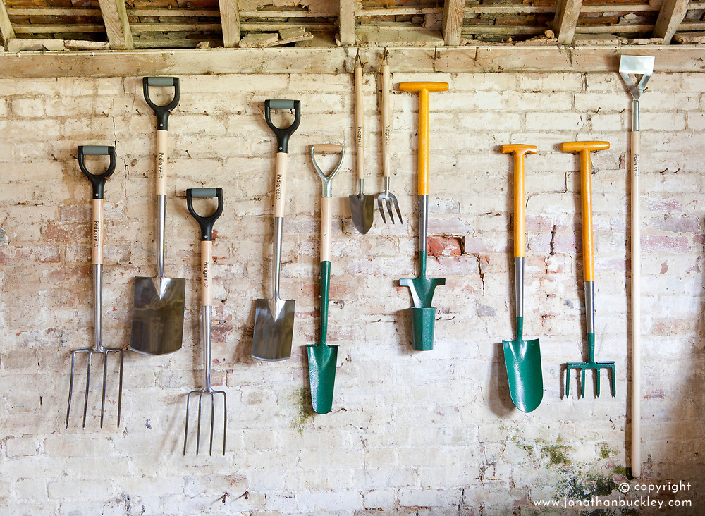 Gardening tools hanging up in a shed. Forks, spade, bulb planter, hoe