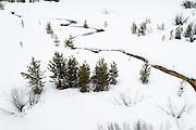 Pilgrim Creek in winter, Grand Teton National Park, Wyoming USA