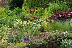 Spring planting at Eastgrove Cottage with tulips, iris, symphytum and heuchera
