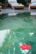 Mauritius Island. Pool spa at hotel Resort
