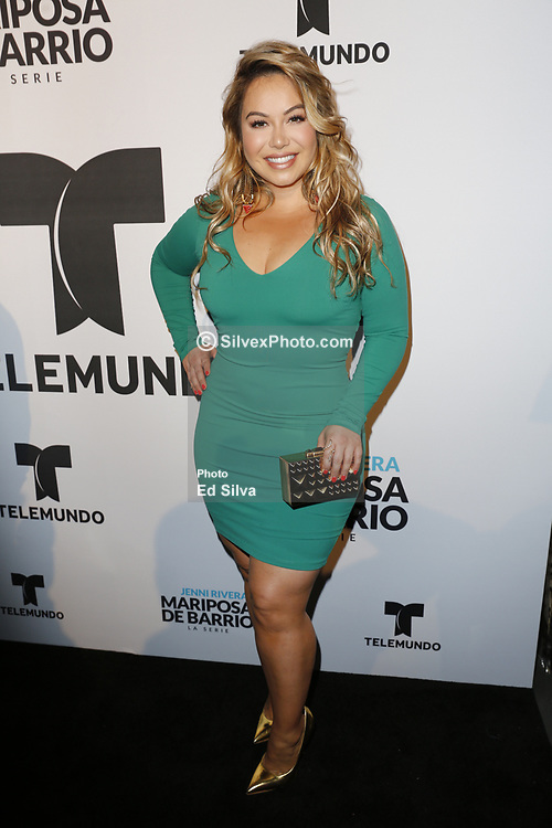 LOS ANGELES, CA - JUNE 26: Chiquis Rivera arrives for the Screening Of Telemundo's 'Jenni Rivera: Mariposa De Barrio' at The GRAMMY Museum on June 26, 2017 in Los Angeles, California. Byline, credit, TV usage, web usage or linkback must read SILVEXPHOTO.COM. Failure to byline correctly will incur double the agreed fee. Tel: +1 714 504 6870.