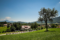 Peloton during 2nd Stage of 26th Tour of Slovenia 2019 cycling race between Maribor and Celje (146,3 km), on June 20, 2019 in Slovenia.. Photo by Matic Klansek Velej / Sportida