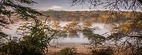 Misty Surrounds Lake Nakuru