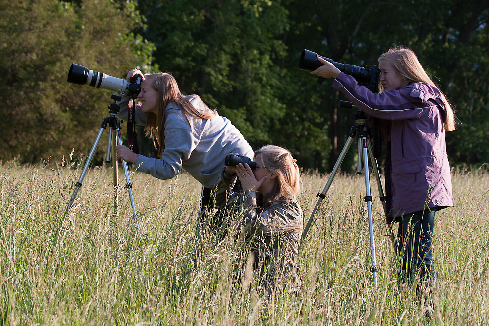 Family watching and photographing wildlife in Cades Cove, Great Smoky Mountain National Park in Tennessee, USA.