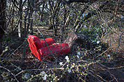 A dumped red armchair in a small patch of woodland in the borough of Southwark, on 24th February 2018, in south London, England.
