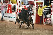 Chad Bull Ride