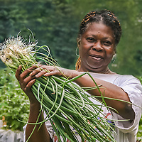 An African-American woman proudly holds a bunch of green onions that she has just harvested from her vegetable garden.