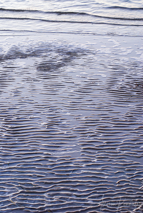Abstract rippled texture of wet sand at low tide, at Assateague Island National Seashore, in Maryland and Virginia