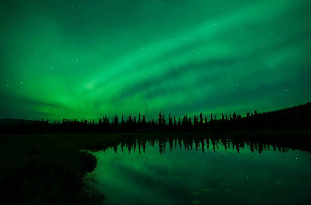 North America; United States; Alaska; Tonglen Lake; Winter; Night; Stars; Sky; Natural Phenomenon; Aurora Borealis; Northern Lights.