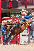 Bareback rider Jesse Davis hangs on to his bronco during the Bareback Championships at the Cheyenne Frontier Days rodeo in Frontier Park Arena July 26, 2015 in Cheyenne, Wyoming. Frontier Days celebrates the cowboy traditions of the west with a rodeo, parade and fair.