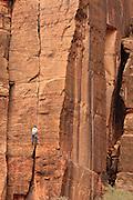 USA, Utah, Zion National Park, climber near Weeping Rock