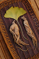 Ginseng, the energy root with Ginkgo leaf.